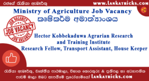 Ministry of Agriculture Job Vacancy - Hector Kobbekaduwa Agrarian Research and Training Institute
