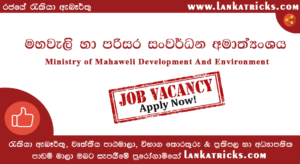 Deputy Project Director (Engineering) Post - Ministry of Mahaweli Development And Environment