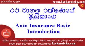 Auto Insurance Basic Introduction