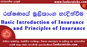 Basic Introduction of Insurance and Principles of Insurance