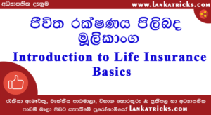 Introduction Life Insurance Basics