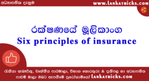 Six principles of insurance